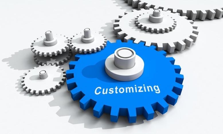 Customizing von Software