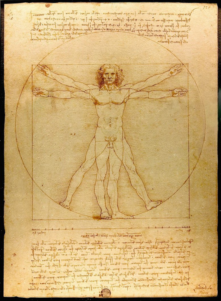 da Vinci: goldener Schnitt